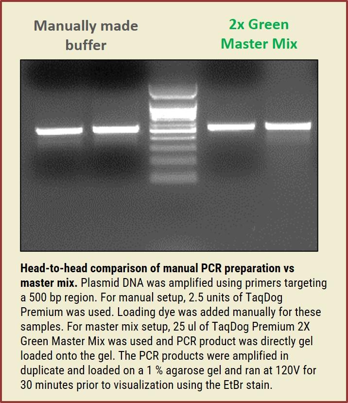 TaqDog 2x Master Mix vs Manually Made Buffer
